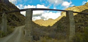 Bridge tauro