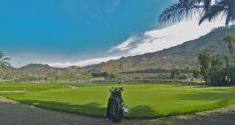 Golf Court