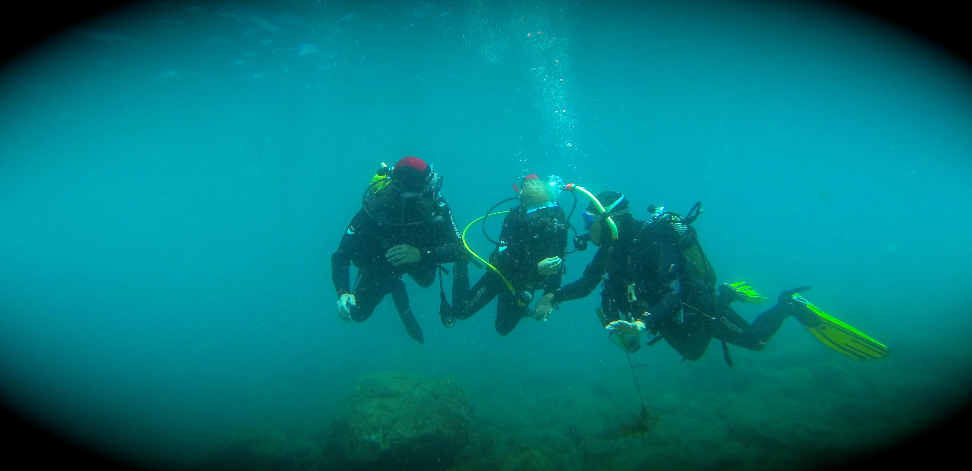 Diving in Arinaga